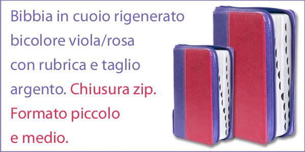 Bibbia Nuova Diodati Viola/Rosa