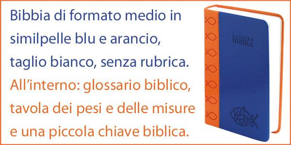 Bibbia Nuova Diodati - A03B - Formato medio