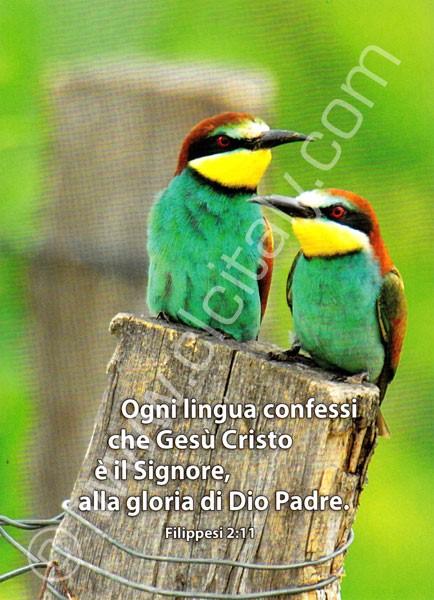 12 Cartoline con versetto - Serie 3 (Cartoncino) [Cartoline/Biglietti]