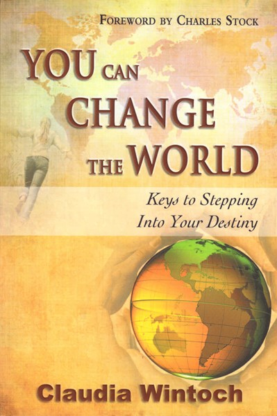 You can change the world (Brossura)