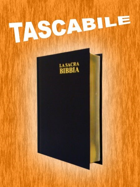 Bibbia Nuova Diodati - E03EN - Formato mini (Copertina rigida)