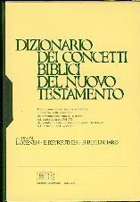 Dizionario dei concetti biblici del Nuovo Testamento (Copertina rigida)
