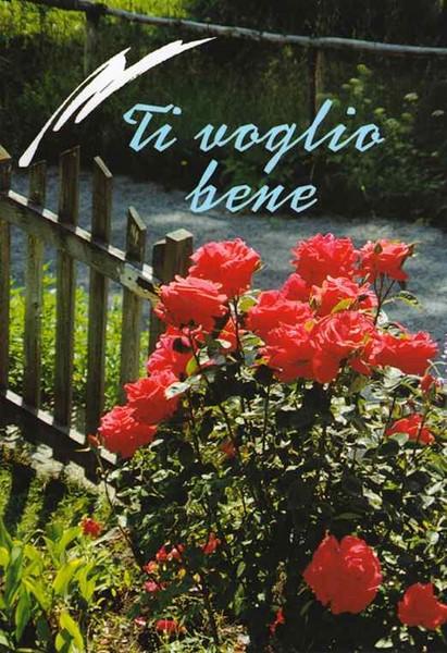 Ti voglio bene - Libretto di auguri (05D 9)