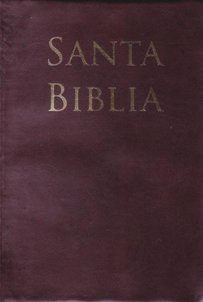 Biblia Letra Grande Tamaño Manual con Referencias - RVR60 - Café (PVC) [Bibbia Media]