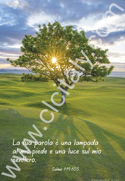 12 Poster con Versetto Biblico - Serie 7