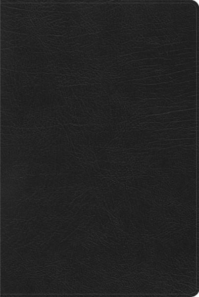 RVR60 Biblia de Estudio Arcoiris (Similpelle)