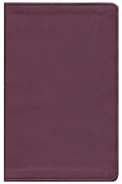 ESV Value Thinline Bible (Pelle) [Bibbia Media]