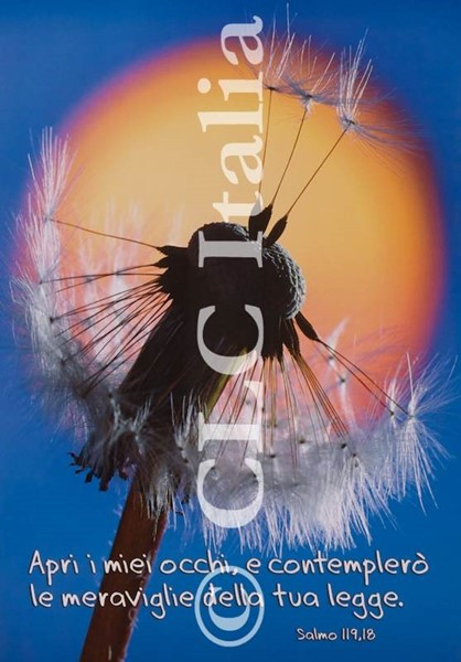 Poster CLC 43