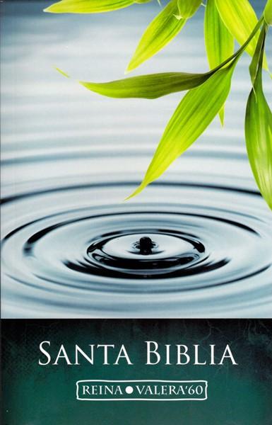 Santa Biblia RVR60 Rustica - Bibbia in spagnolo - lingua spagnola (Brossura)