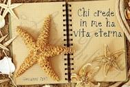 """Quadro """"Stella marina"""" - Rettangolare piccolo (RTN069)"""