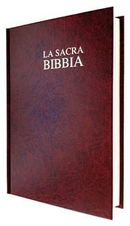 Bibbia da Studio Thompson Nuova Diodati - TH03EO