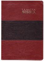 Bibbia Nuova Diodati a caratteri grandi - Formato grande (171.244) In arrivo a Novembre!