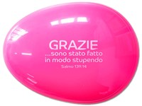A1491 Spazzola per capelli rosa Salmo 139:14
