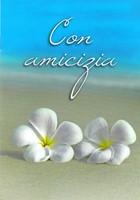 Con amicizia - Libretto di auguri (05D 167)