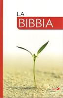 La Bibbia Versione San Paolo - Low Cost
